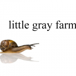[Little Gray Farms]