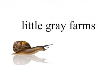 [Little Gray Farms]